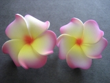 Mini Petals Plumeria Flower Clip Set  White w/ Pink Rims Yellow Center & Red Hub