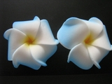 Mini Petals Plumeria Flower Clip Set  Blue
