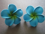 Hawaiian Plumeria Fimo Post Earring Turquoise w/ Yellow Hub X Large