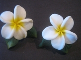 Hawaiian Plumeria Fimo Post Earring w/ Leaves-White w/ Yellow Center