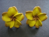 "Hawaiian Plumeria Fimo Post Earring Dark Yellow  1"" inch"