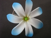 "Mini Tahitian Gardenia ""Tiare""  Flower-White w/ Blue Tips"