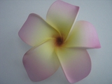 4 Inch Pointed Petal Plumeria Flower- Pink Tips w/ Yellow Center & Red Hub