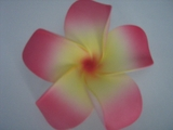 4 Inch Pointed Petal Plumeria Flower- Sherbet Pink w/ Yellow Center