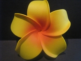 4 Inch Pointed Petal Plumeria Flower- Yellow Tips w/ Red Center