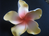 "6 "" Crinkled  Petals PLUMERIA FLOWER PICK- Orange w/ Red Center"