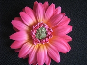 GERBERA DAISY FOAM FLOWER CLIP-Fushia Pink w/ Yellow Center
