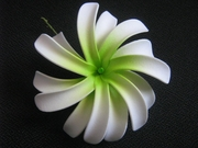 "4"" DOUBLE PETALS TIARE FLOWER HAIR  PICK-White w/ Green Center"