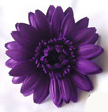 GERBERA DAISY FOAM FLOWER HAIR CLIP-Persian Indigo