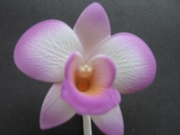 ORCHID FLOWER HAIR CLIP