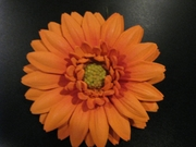 GERBERA DAISY FOAM FLOWER HAIR CLIP-Sunshine Orange