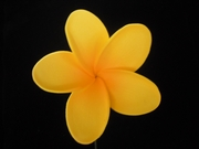 STAR POINTED PETAL PLUMERIA FLOWER HAIR PICK Sunny Yellow