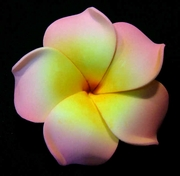 PLUMERIA FLOWER HAIR CLIP Soft Pink w/ Yellow Center