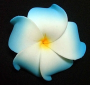PLUMERIA FLOWER HAIR CLIP White w/ Blue Tips