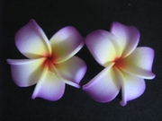 2 pc Mini Pointed Petals Plumeria Flower Hair Clip Set  Glowing Purple Yellow