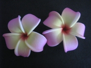 2 pc Mini Pointed Petals Plumeria Flower Hair Clip Set  Pink Yellow