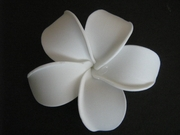 POINTED PETAL PLUMERIA FLOWER HAIR CLIP Aloha White