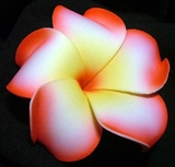 PLUMERIA FLOWER HAIR CLIP White w/ Red Rims & Yellow Center