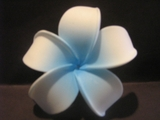 POINTED PETAL PLUMERIA FLOWER HAIR CLIP White w/ Blue Center