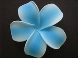 POINTED PETAL PLUMERIA FLOWER HAIR CLIP White Blue Stripes