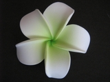 POINTED PETAL PLUMERIA FLOWER HAIR CLIP White Green