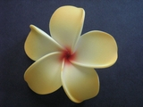 POINTED PETAL PLUMERIA FLOWER HAIR CLIP Yellow Red Hub