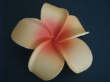 POINTED PETAL PLUMERIA FLOWER HAIR CLIP  Orange Red