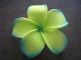 POINTED PETAL PLUMERIA FLOWER HAIR CLIP Guava Green w/ Emerald Green Tips