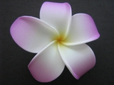 POINTED PETAL PLUMERIA FLOWER HAIR CLIP White Purple Tips