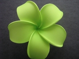 POINTED PETAL PLUMERIA FLOWER HAIR CLIP Guava Green