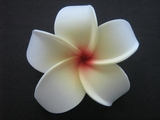 POINTED PETAL PLUMERIA FLOWER HAIR CLIP White Yellow Red Hub