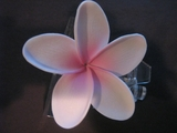 "3 ""STAR POINTED PETAL PLUMERIA FLOWER HAIR PICK White w/ Pink Center"