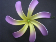 "4"" TAHITIAN GARDENIA TIARE  COLORED FLOWER-Yellow w/ Purple Tips"