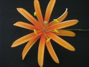"""4""""  SPIDER LILY STRAIGHT DOUBLE PETALS FOAM HAIR PICK"""