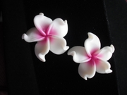 Plumeria Fimo Post Earring White w/ Pink Hub X- Large- Pointed Petals