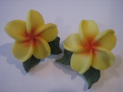 Hawaiian Plumeria Fimo Post Earring w/ Leaves-Yellow w/ Red Center