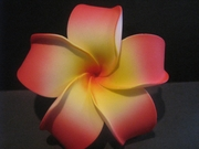 4 Inch Pointed Petal Plumeria Flower- Yellow Center w/ Red Tips