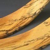 Spalted Salad Tossers