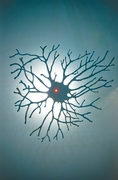 Neuron Wall Sconce