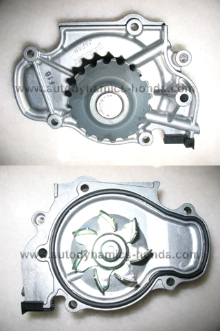 Honda PT2 P39 OEM Water Pump