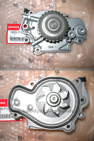 Honda P13 Water Pump