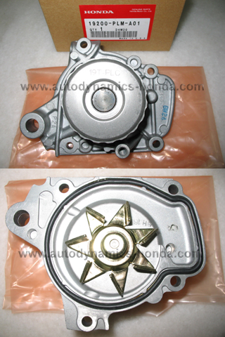 Honda PLM Water Pump