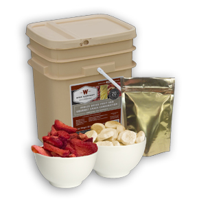Wise 120 Serving Fruit Grab And Go Bucket