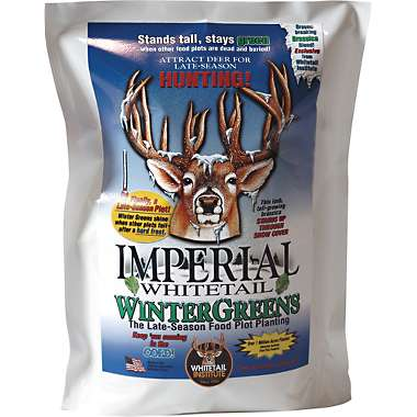 Whitetail Institute Imperial Wintergreens - 12#