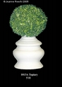 Jeanne Reed's - Topiary
