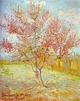 Art - Oil Paintings - Masterpiece #4212 - Vincent Van Gogh - Peach Tree in Bloom - Gallery Quality