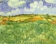 Art - Oil Paintings - Masterpiece #4231 - Vincent Van Gogh - Plain Near Auvers - Gallery Quality