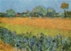 Art - Oil Paintings - Masterpiece #4238 - Vincent Van Gogh - View of Arles With Iris - Gallery Quality