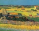 Art - Oil Paintings - Masterpiece #4243 - Vincent Van Gogh - Harvest at La Crau - Gallery Quality