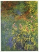 Art - Oil Paintings - Masterpiece #4411 - Claude Monet - Irises, 1914-17 - Gallery Quality